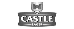 Castle Larger Logo