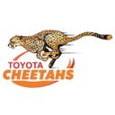 Toyota Free State Cheetahs Logo