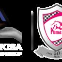 Phakisa Pumas Logo